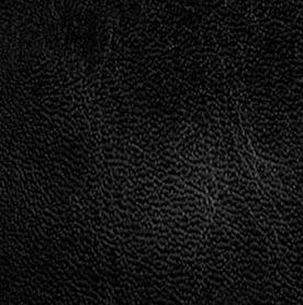 Black Sheen